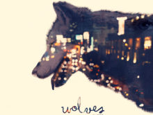 Wolves – the debut album & book by Eco