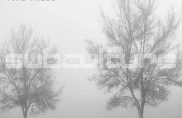 John O'Callaghan – Two Trees