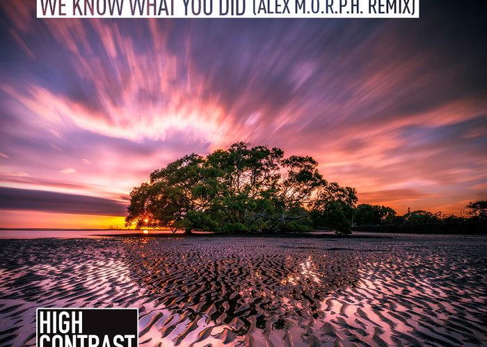 Svenson & Gielen – We Know What You Did (Alex M.O.R.P.H. Remix)