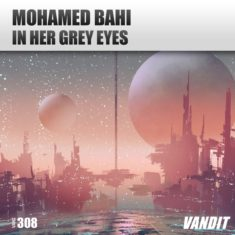 Mohamed Bahi – In Her Gray Eyes