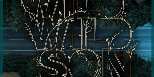 Armin van Buuren feat. Sam Martin – Wild Wild Son
