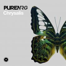 PureNRG – Chrysalis