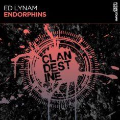 Ed Lynam – Endorphins