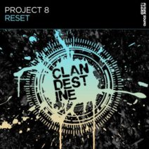 Project 8 – Reset