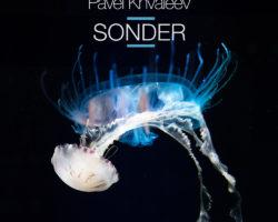 Pavel Khvaleev – Sonder [Album]