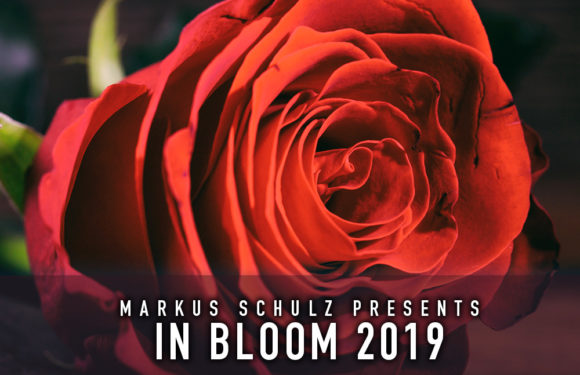 Markus Schulz brings 'In Bloom 2019' to Spotify