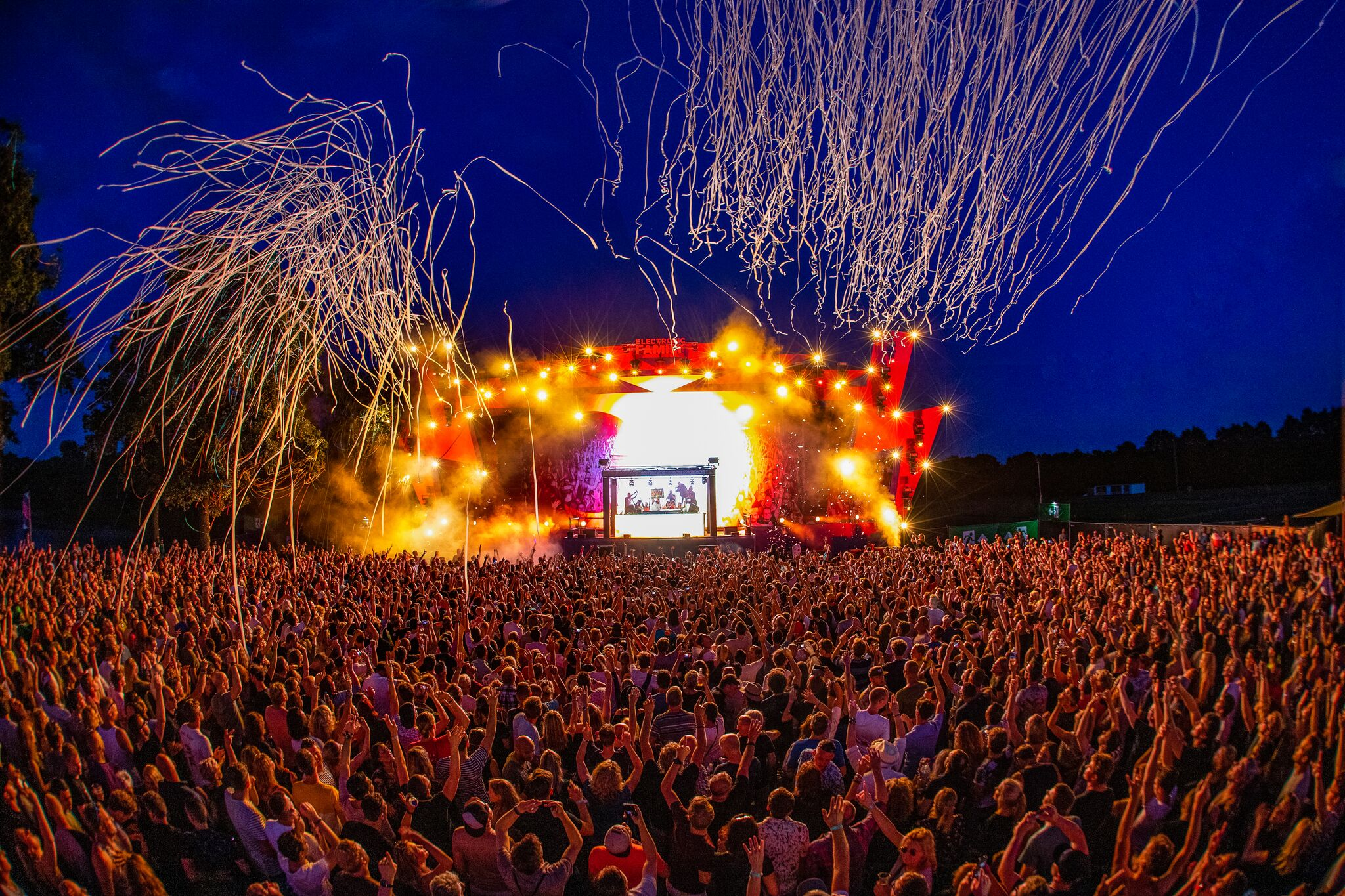 Electronic Family 2019 review