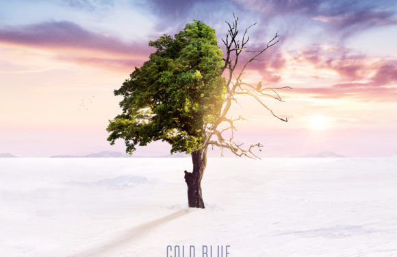 Cold Blue – Winter