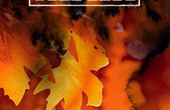 Cold Blue – Golden Leaves